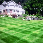 lawncare-services-zeeland-mi